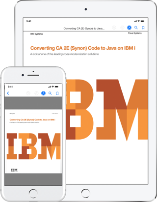 CA 2E Synon to Java White Paper IBM i