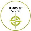 IT Strategy - Fresche